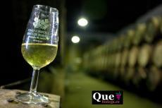 Imagen del reportajeLagar del Monte, viñedos por fanegas y vino por arrobas