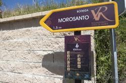 Imagen 8 de Bodega Morosanto, siguiendo en camino de Íberos, Romanos y Musulmanes.