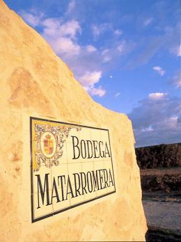 Imagen 3 de la bodega Matarromera