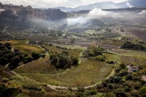 Imagen del reportajeLa niebla protege al Santa Iusta y Santa Rufina