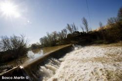 Imagen 6 de PradoRey, paseos enoturísticos junto a la ribera del Duero