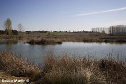 Imagen 9 de PradoRey, paseos enoturísticos junto a la ribera del Duero