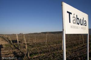 Imagen del reportajeT�bula, cata sorpresa de la barricas de todos los T�bula