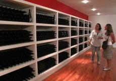 Imagen del reportajeBodega y Viñedos de Trujillo, donde los vinos extremeños HABLAn