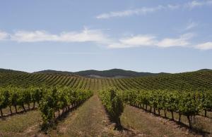 Imagen del reportajePaseando y disfrutando por el Valle de Nekeas