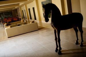 Imagen del reportajePago de Vallegarc�a, paso a paso de la mano de su Viognier